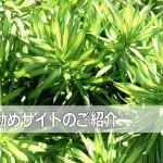 日本から発信している英語ニュースサイト JapanToday