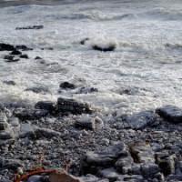 ウェールズの海にできた泡