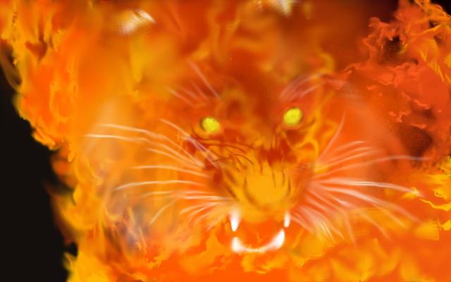 炎虎のイメージ