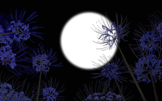 青い彼岸花イメージ