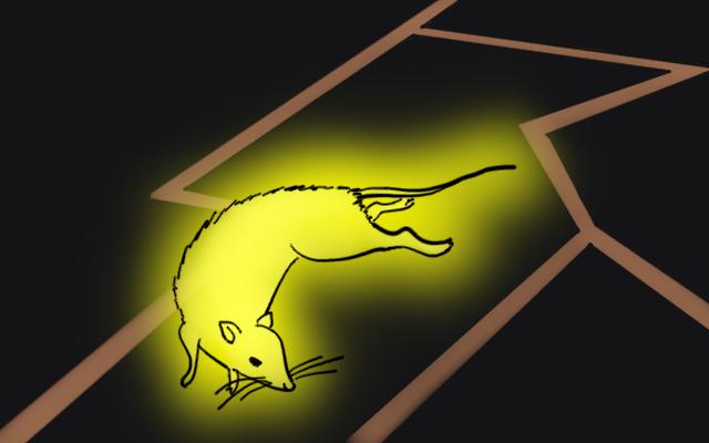 雷獣のイメージ